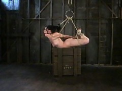 Welcome Ariel to her debut Hogtied appearance.
