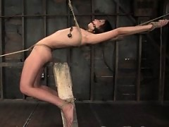 Amber Rayne severely bound to the limits of her shaved body.