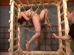 Ava fight against her ropes to try and avoid forced orgasms.
