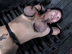 Claire Dame's Huge Tits Bound and Whipped on Devicebondage!
