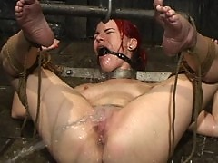 Dana DeArmond goes upside-down in the HOUDINI TANK!