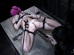 Sasha Grey and a pink haired slut treated to punishment bondage