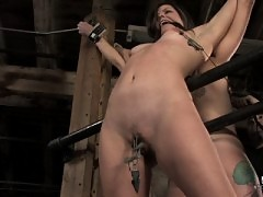 Part 2 of Bobbi Starr's all day 3 girl hardcore live BDSM show