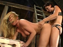 New girl Trina wickedly punished by Mistress Cami in the barn