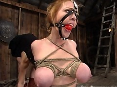 Darling gets her tits zapped while her bound body is vibrated