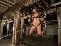 Harmony put to the test by harsh nipple clamps and single tail