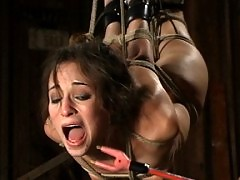 Amber Rayne's flexible body is suspended and Wired to cum
